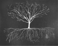 Katie Holten, Untitled (white tree on black paper), 2006<br>Pencil on paper, c. 57 x 72 cm<br>Courtesy VAN HORN, Düsseldorf
